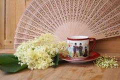 Medicinalväxt - elderflower Royaltyfri Bild