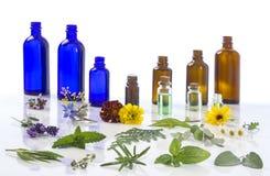 Medicinalväxt- och blommaval, pepparmint, passiflora, vis man, timjan, lavendel, marygold, citronbalsam med Arkivfoto