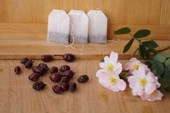 Medicinalväxter - äppelros Royaltyfria Bilder