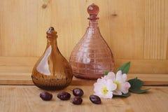 Medicinalväxter - äppelros Fotografering för Bildbyråer