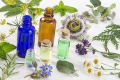 Medicinalväxt- och blommaval, pepparmint, passiflora, vis man, timjan, lavendelcitronbalsam med en aromatherapy Royaltyfria Bilder