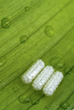 Medicinas naturais Fotos de Stock