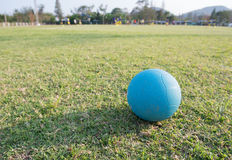 Medicine ball. For recovery injured player Royalty Free Stock Photos