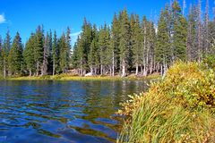 Medicine bow national forest. Little Brooklyn Lake in the Medicine Bow National Forest of Wyoming royalty free stock image