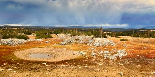 Medicine Bow National Forest Storm Clouds royalty free stock photography