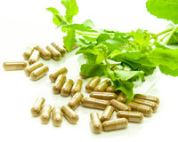 Medicine capsule Herb. Stock Photos