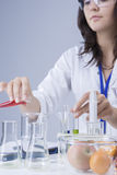 Medicine Concepts and Ideas. Female Laboratory Staff Working with Flasks and Fruits Specimens in Laboratory Royalty Free Stock Photo
