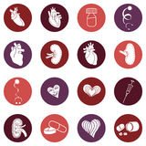 Medicine. Heart doctor icon. Vector illustration image Royalty Free Stock Images