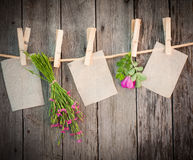 Medicine herbs and paper attach to rope Stock Photos