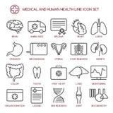 Medicine and human health line icons royalty free illustration