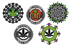 Medicine marijuana graphic badges s vector illustration