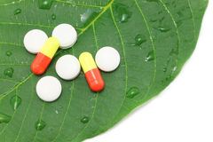 Medicine pills on the green leaf Stock Image