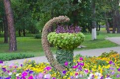 medicine plant symbol Stock Photo