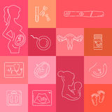 Medicine and pregnancy vector line icon Royalty Free Stock Images