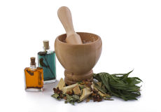 Medicine preparation. Mortar with herbs and roots for preparing organic medicine Royalty Free Stock Image