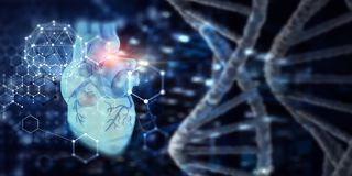Medicine research of human heart royalty free stock photo