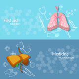 Medicine and transplantation human organs banners Royalty Free Stock Image