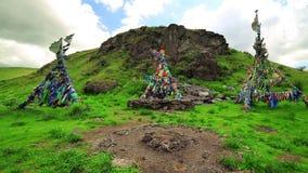 Medicinman Adak Tree, böns flagga stock video