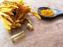 Medicinsk örtnatur för drog Arkivbild