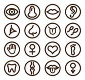 Medicinsk linje symbolsuppsättning för rengöringsduk och mobil Royaltyfria Bilder