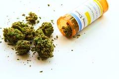 Medicinsk marijuana A arkivbilder