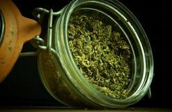 Medicinsk marijuana Arkivbild
