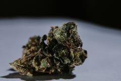 Medicinsk marijuana, cannabis, Sativa som är indica, Trichomes, THC, CBD, cancerbot, ogräs, blomma, hampa, gram, knopp Royaltyfria Bilder