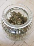 Medicinsk marijuanabunke Royaltyfri Bild