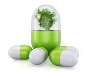 Medicinsk preventivpiller med växten inom Royaltyfria Foton