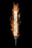 medicinsk termometer Arkivbilder