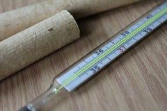 Medicinsk termometer som är kvicksilver- med temperaturen som mäter kroppstemperaturen royaltyfri bild