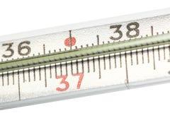 Medicinsk termometernärbild för gammalt kvicksilver som isoleras på vit bakgrund Skalan i celsiusa grader arkivbilder