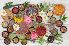 Medicinska örter och blommor Arkivfoto