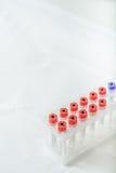 Medicinska flaskor för laboratoriumforskning Royaltyfri Fotografi
