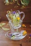 Medicinska nya blommor i koppen Royaltyfri Foto