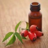 Medicinska rosa höfter med nödvändig olja arkivfoto