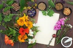 Medicinskt ört- och blommaval Royaltyfri Fotografi