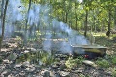 Medicinskt bad i skog 1 Arkivbilder