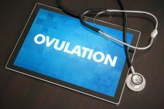 Medicinskt begrepp för ägglossning (släkt menstruations- cirkulering) på minnestavlasc Royaltyfri Fotografi