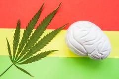 Medicinskt cannabisblad och diagram för hjärna som anatomiskt ligger på röd, gul och grön Rasta bakgrund Påverkan av kultur av Ra royaltyfria foton