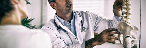 Medico che mostra la parte della donna della spina dorsale immagini stock libere da diritti