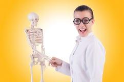 Medico con lo scheletro Fotografia Stock Libera da Diritti