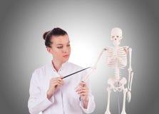 Medico con lo scheletro Immagine Stock Libera da Diritti