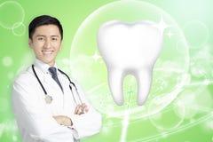 Medico del dentista che mostra dente sano con il concetto d'ardore fotografie stock libere da diritti
