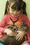 Medico del gatto immagini stock