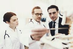 Medico del terapista mostra a problema le vertebre cervicali sul modello anatomico al paziente in ufficio medico fotografia stock libera da diritti