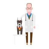 Medico del veterinario Fotografia Stock