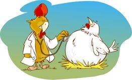 Medico e pollo paziente del gallo Immagini Stock Libere da Diritti