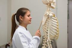 Medico e scheletro Fotografia Stock Libera da Diritti