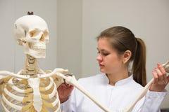 Medico e scheletro Immagine Stock Libera da Diritti